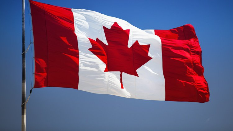 Canada hires chief digital enforcement officer