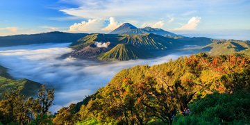 An unpredictable landscape: Indonesia Worked Out
