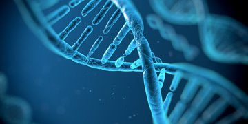CMA takes DNA sequencing deal to Phase II
