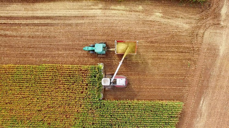 Ethanol companies to contest EU cartel allegations