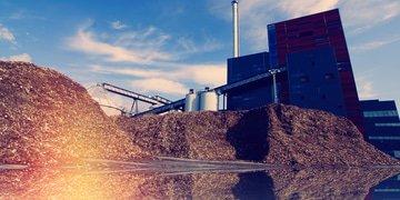 Banco Galicia plants loan for biomass project
