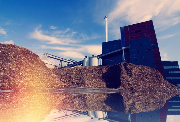 Banco Galicia plants loan for biomass project