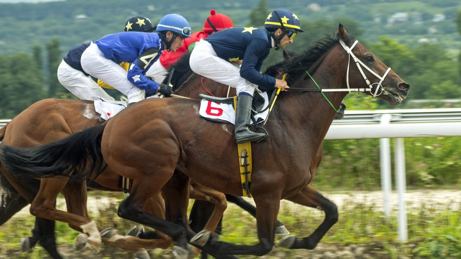 Global Data Review - News - High Court finds betting company