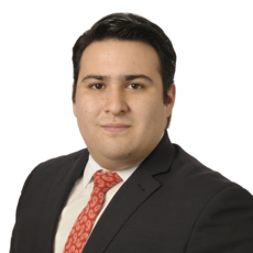 Sebastián  Rosales-Ortega
