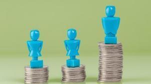 Salary Survey: Occupational biases