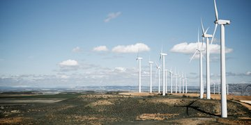 Spain beats bulk of another renewables claim