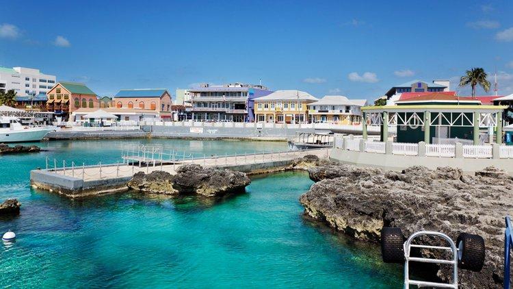 Privy Council blocks Cayman liquidator's change of member register